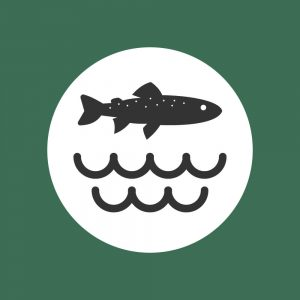 trout-water-icon