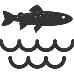 Trout water icon