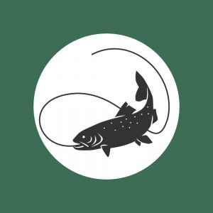 Fly fish trout icon