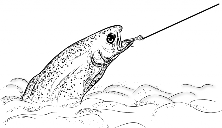 Trout-on-the-fly