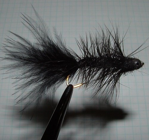 Black Woolly Bugger
