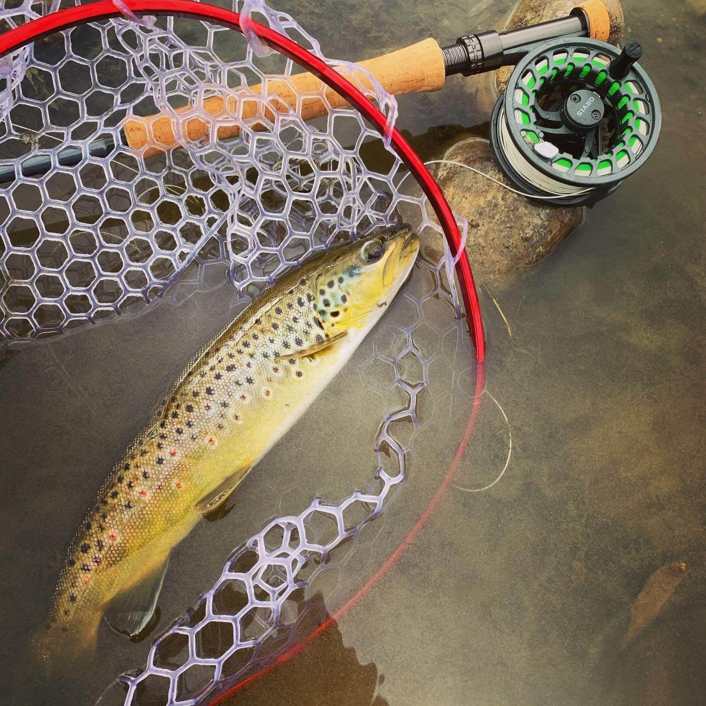 Orvis Clearwater Pic