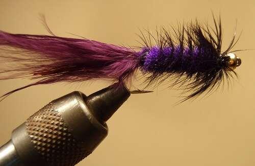 Purple Woolly Bugger
